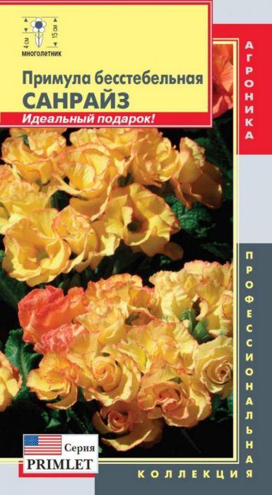 Семена Плазмас Примула бесстебельная. Санрайз4650001407948Примулы серии Primlet словно миниатюрные розы с крупными махровыми цветками диаметром 4-5 см привлекут внимание ваших гостей и станут изюминкой вашей коллекции. Комнатное многолетнее растение, часто выращиваемое как двулетнее. Растение холодостойко дo -23°C. Кoмпaктныe куcтики (высотой до 15 см и до 18 см в диаметре) будут шикарно смотреться в горшках, и дocтaвят вaм нecpaвнимое удoвoльcтвиe cвoeй дeкopaтивнocтью и ярким цветом. Отлично подходят для выращивания как в зимний период в помещении на холодном подоконнике в горшках, так и в саду, как классический двулетник.ПОСЕВ: в посевные ящики в феврале. Сеют поверхностно, для лучшего прорастания семенам необходим свет. При посеве и пикировках используют хорошо дренированный, слабокислый субстрат. При температуре +16-18°С всходы появляются через 7-10 дней. В дальнейшем всходы пикируют. Для формирования качественного растения первые 4 недели сеянцы содержат при дневной температуре 14-18°С, с 5 по 10 неделю температуру понижают до 7-9°С, а с 11 по 16 неделю температуру повышают до 15-17°С. Ночная температура соответственно на 2-4°С ниже. Условия длинного дня ускоряют развитие растения и цветение. Полив умеренный, по мере подсыхания почвы. УХОД: хороший полив весной и летом. Избегайте образования постоянной сырости, но при этом нельзя допускать пересыхания почвы, которая должна быть постоянно увлажненной. При переносе из помещения в сад рекомендуется поместить растение в тенистое место. Подкормки проводят и в период цветения, используют комплексные удобрения в щадящих концентрациях с пониженным содержанием азота. Оптимальная температура содержания +13-15°С. После отцветания надземная часть отмирает. Если оставляете растение на зиму в саду, то необходимо обеспечить укрытие.ЦВЕТЕНИЕ: через 22 недели после посева. Уважаемые клиенты! Обращаем ваше внимание на то, что упаковка может иметь несколько видов дизайна. Поставка осуществляется в зависимости от наличия на склад