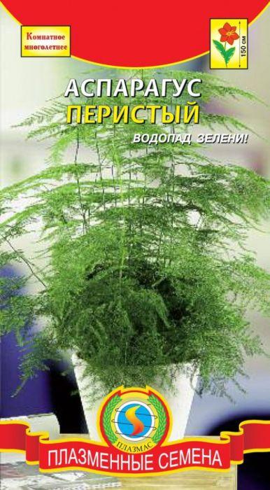 Семена Плазмас Аспарагус перистый4650001408457Прекрасное ампельное комнатное растение, летом можно выращивать наоткрытом воздухе в полузатененном уголке. Один из наиболее декоративныхвидов аспарагуса. Это вьющийся кустарник, высотой до 1,5 м, с голымипобегами, на которых образуется большое количество собранных пучкамитонких иглообразных ветвей, заменяющих листья, которые формируют пышнуютемно-зеленую ажурную основу куста. Используется в озеленении помещенийкак лазящее по опоре или ампельное растение, в зимних садах, для аранжировкибукетов и композиций. Посев: с марта по июль в рыхлую питательную землю, слегка заделывая семена.Предварительно их замачивают в теплой воде в течение двух дней. Допоявления всходов посевы накрывают светонепроницаемым материалом иобеспечивают хорошую вентиляцию. При температуре 20-25 °С всходыпоявляются через 3-4 недели. Выросшие до 7-8 см сеянцы пикируют по одному вгоршочки диаметром 8-10 см. Чтобы ростки не искривлялись, ящики регулярноповорачивают по отношению к свету. Для аспарагуса предпочтительны мягкийрассеянный свет или полутень, оптимальная температура воздуха 18-22 °С,легкая плодородная почва. Уход: летом – полив 2-3 раза в неделю и частые опрыскивания. Пересадкувзрослых растений проводят весной только тогда, когда корни начнутвыталкивать растение из горшка. Летом проводят подкормки раз в неделюудобрениями, для комнатных растений, разведенных водой. Летомрекомендуется выносить растение на свежий воздух: можно украсить им балконили сад, лучше в полутенистое место, избегая сквозняков и осадков. На время соктября по февраль вынужденно уходит в состояние покоя, если в эти месяцыне поддерживать температурный режим 14-17 °C, то могут оголиться стебли сполным или частичным осыпанием ветвей-иголок; в период покоя поливаютредко, если температура ниже 14 °C - земляной ком содержат практическисухим.Уважаемые клиенты! Обращаем ваше внимание на то, что упаковка может иметьнесколько видов дизайна. Поставка осуществляется в зависимости от наличи