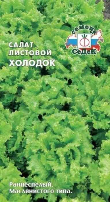 Семена Седек Салат листовой. Холодок4690368009669