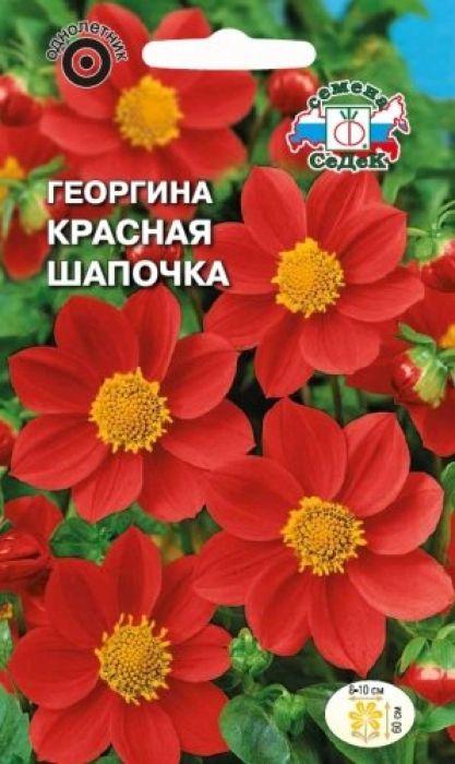 Семена Седек Георгина. Красная Шапочка4690368023139Относится к группе немахровых георгин под названием Веселые ребята. Растение травянистое, кустистое с крепкими прямыми стеблями и темно-зелеными многочисленными листьями, высотой 60 см. Соцветия-корзинки диаметром 8-10 см, состоят из красных язычковых и жёлтых крупных трубчатых цветков. Цветение длительное и непрерывное до заморозков. Растение тепло- и светолюбиво, предпочитает защищенные от холодных и сильных ветров места, рыхлые плодородные почвы, умеренное увлажнение. Используется в групповых и одиночных посадках, на клумбах, рабатках, в вазонах и балконных ящиках. Товар сертифицирован. Уважаемые клиенты! Обращаем ваше внимание на то, что упаковка может иметь несколько видов дизайна. Поставка осуществляется в зависимости от наличия на складе.