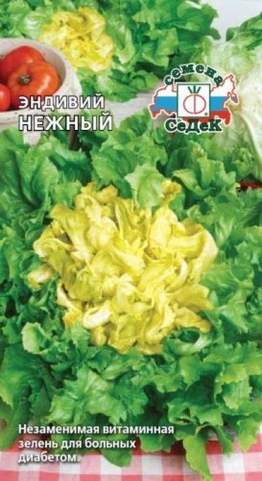 Семена Седек Эндивий салат. Нежный4690368023597 Уважаемые клиенты! Обращаем ваше внимание на то, что упаковка может иметь несколько видов дизайна. Поставка осуществляется в зависимости от наличия на складе.
