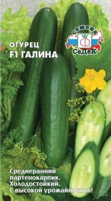Семена Седек Огурец. Галина F14690368023948Среднеранний (50-55 дней) партенокарпический гибрид для теплиц и пленочных укрытий. Растение сильнорослое, женского типа цветения. Зеленцы удлиненно-цилиндрические, слегка ребристые, ярко- зеленые, глянцевые, длиной 13-15 см, с тонкой кожицей, нежные, сочные, сладкие. Урожайность 12-14 кг/м2. Ценность гибрида: устойчивость к мучнистой росе, холодоустойчивость, теневыносливость, отличные вкусовыекачества. Рекомендуется для употребления в свежем виде. Уважаемые клиенты! Обращаем ваше внимание на то, что упаковка может иметь несколько видов дизайна.Поставка осуществляется в зависимости от наличия на складе.