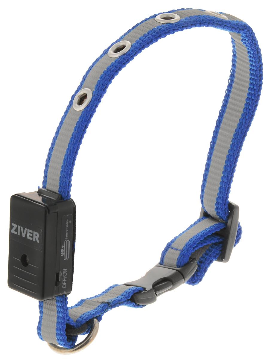 Ошейник светящийся  Ziver-402  для кошек и собак мелких пород, цвет: голубой, 30 см х 1,2 см - Товары для прогулки и дрессировки (амуниция)