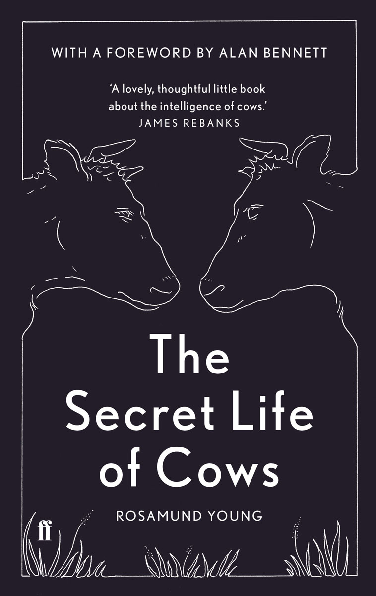 The Secret Life of Cows seeing things as they are