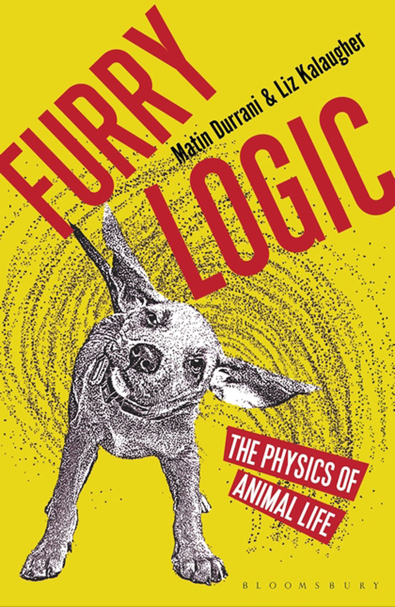Furry Logic lidiya strautman introduction to the world of nuclear physics