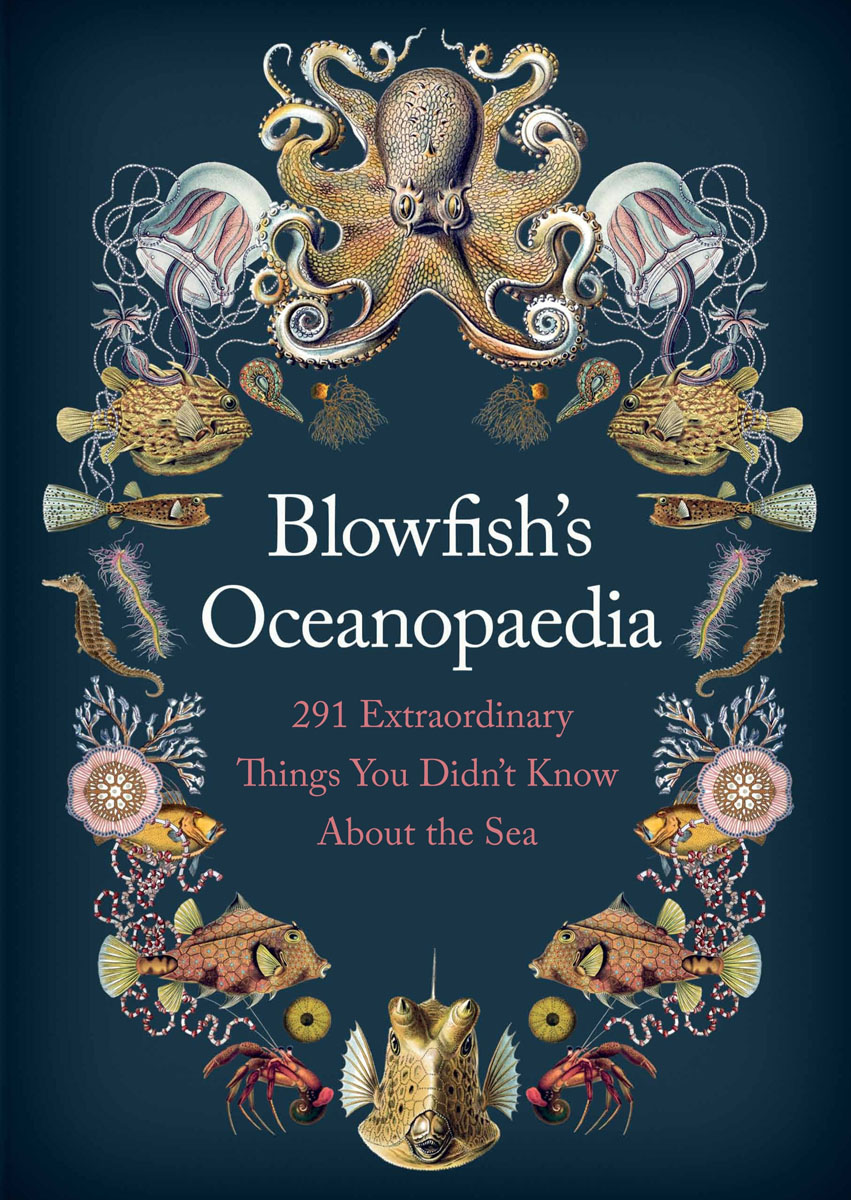 Blowfish's Oceanopedia verne j journey to the centre of the earth