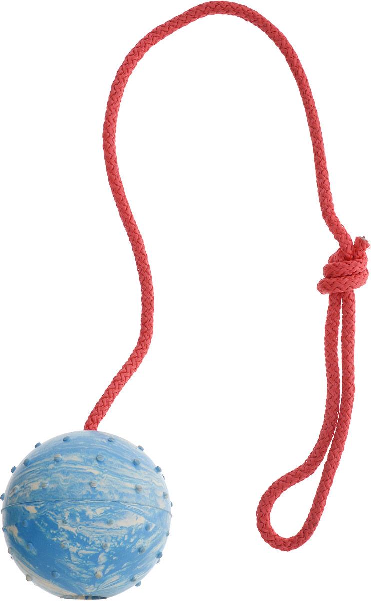 Игрушка для собак Каскад  Мяч цельнолитой , на веревке, цвет: голубой, белый, диаметр 7 см - Товары для прогулки и дрессировки (амуниция)