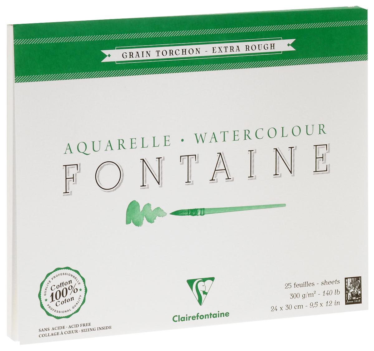 Альбом Clairefontaine  Fontaine , грубая техника, цвет: зеленый, белый, 24 х 30 см, 25 листов -  Бумага и картон