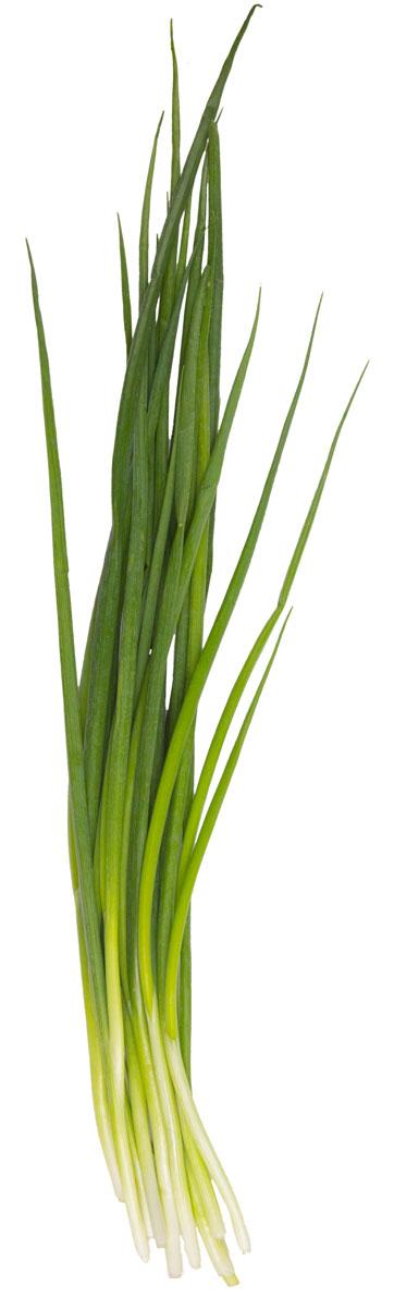 Зеленый сад Лук зеленый, 100 г лук jandao