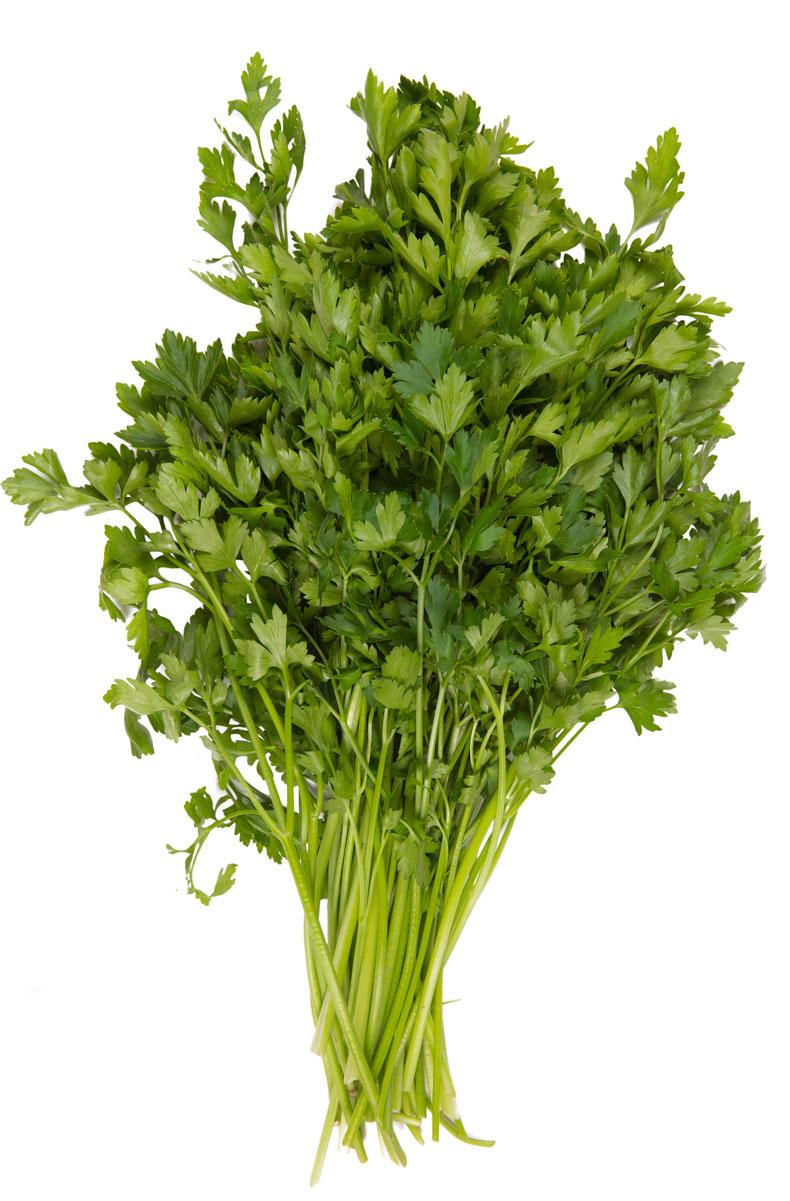 Зеленый сад Петрушка, 100 г18077Петрушка обладает очищающими и обеззараживающими свойствами, поэтому может выступать в качестве заменителя жвачки - отбеливает зубы, освежает дыхание и даже укрепляет десны. Эта зелень благоприятно воздействует на желудочно-кишечный тракт, ее рекомендуют при гастрите, язвах или плохом аппетите.В составе петрушки содержится важное вещество - инулин, которое отвечает за процессы глюкозного обмена в организме, поэтому трава полезна диабетикам.Повышенное содержание витамина С - достаточно съесть всего 50 грамм этой зелени, чтобы обеспечить себя необходимой нормой.