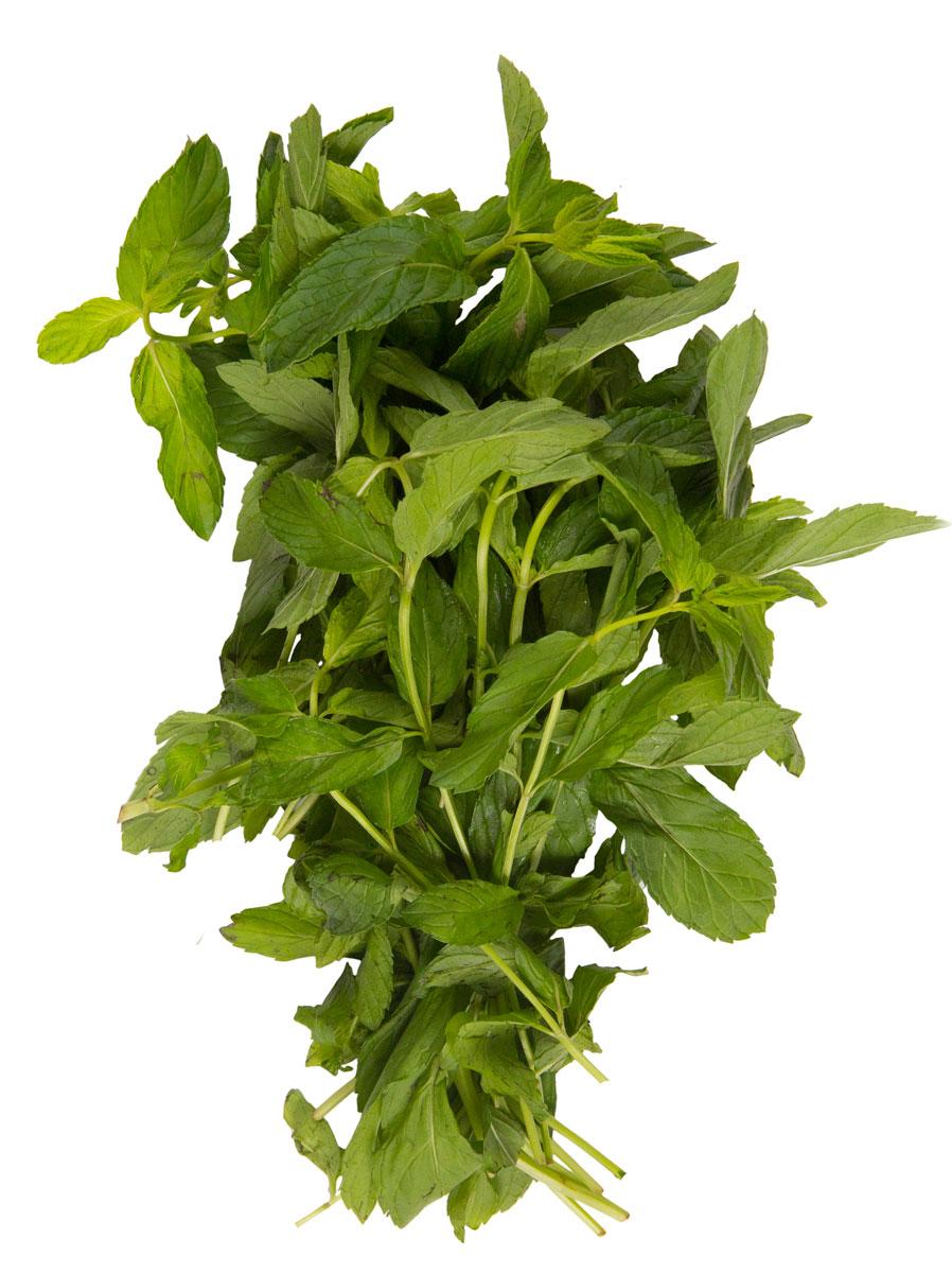 Зеленый сад Мята, 50 г2014281Лечебные свойства и противопоказания мяты обусловлены ее биохимическим составом. Она богата аминокислотами, эфирным маслом, смолами, пищевыми волокнами, органическими кислотами, дубильными и зольными веществами, водой, фитостеролами, жирными кислотами, терпенами. Растение отличается высоким содержанием витаминов (ретинол, группа В, никотиновая и аскорбиновая кислоты) и жизненно необходимых микро- и макроэлементов (магний, кальций, марганец, натрий, цинк, железо, фосфор, медь, калий).