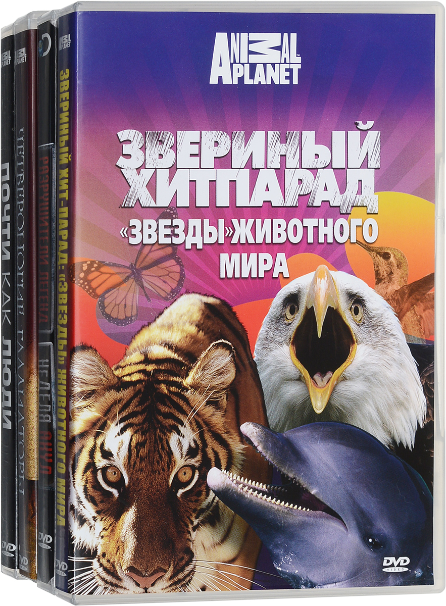 Discovery: Звезды животного мира (4 DVD) our discovery island 4 dvd
