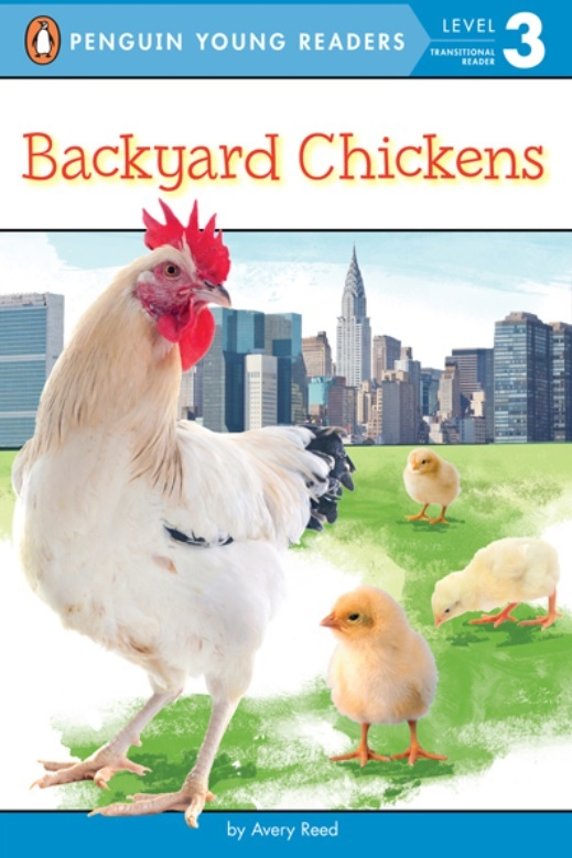 EXP BACKYARD CHICKENS PYR LV 2 broadlink tc2 wifi 2 gang touch switch panel us lv standard