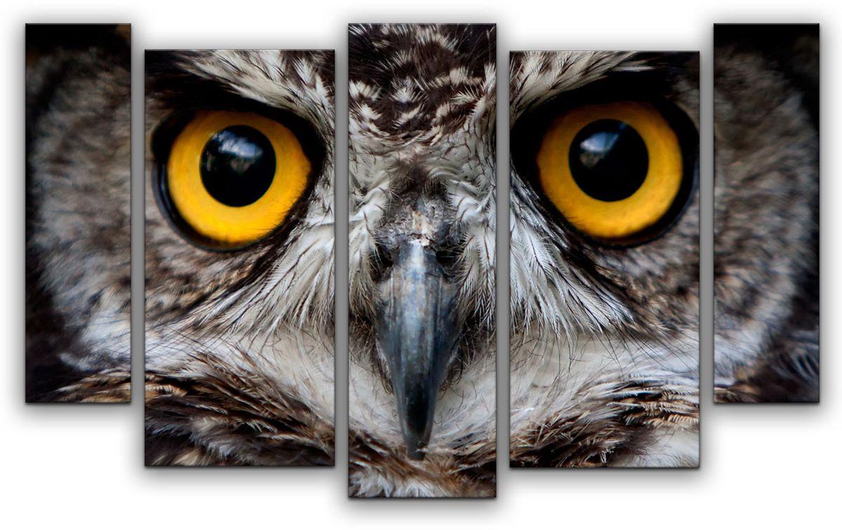 Картина модульная Картиномания Взгляд совы, 120 x 77 смАРТ-М669MВ состав входит комплект креплений и инструкция по креплению на стену.
