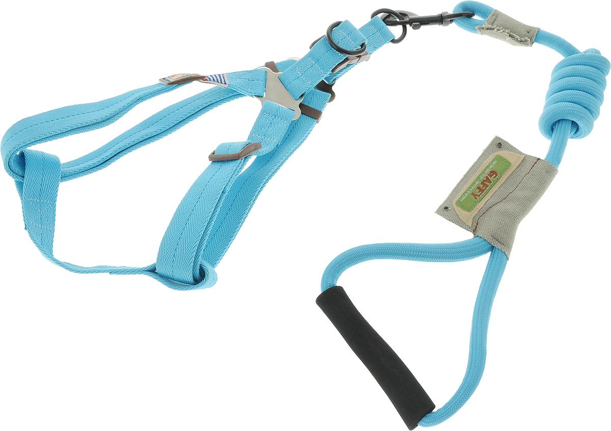 Шлейка для собак Gaffy Pet  Round , с поводком, цвет: голубой. Размер L - Товары для прогулки и дрессировки (амуниция)