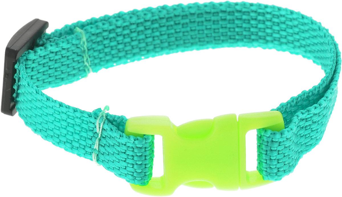 Ошейник для животных GLG Эконом, цвет: зеленый, ширина 1 см, обхват шеи 18-28 смOH22/A_зеленыйОшейник для животных GLG Эконом, цвет: зеленый, ширина 1 см, обхват шеи 18-28 см