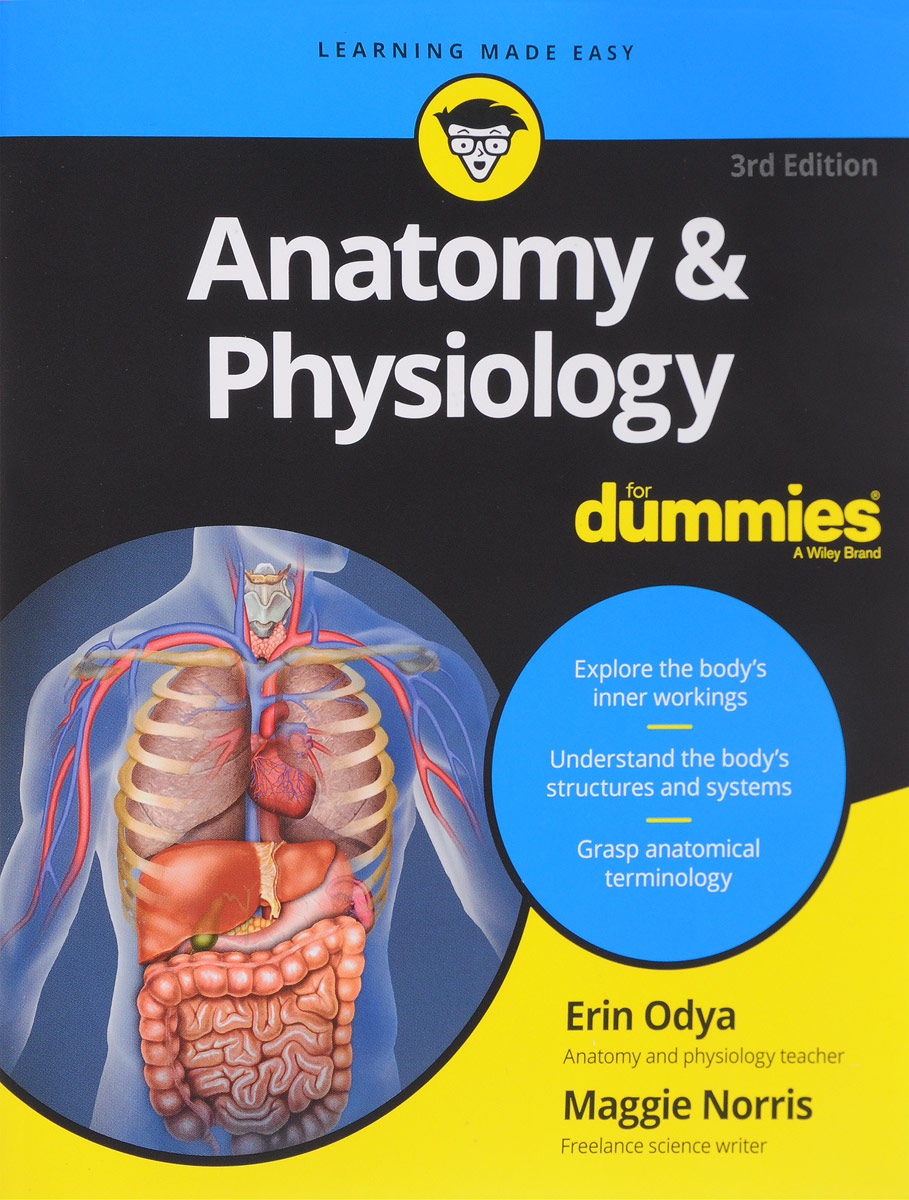 Anatomy & Physiology erin odya anatomy and physiology for dummies