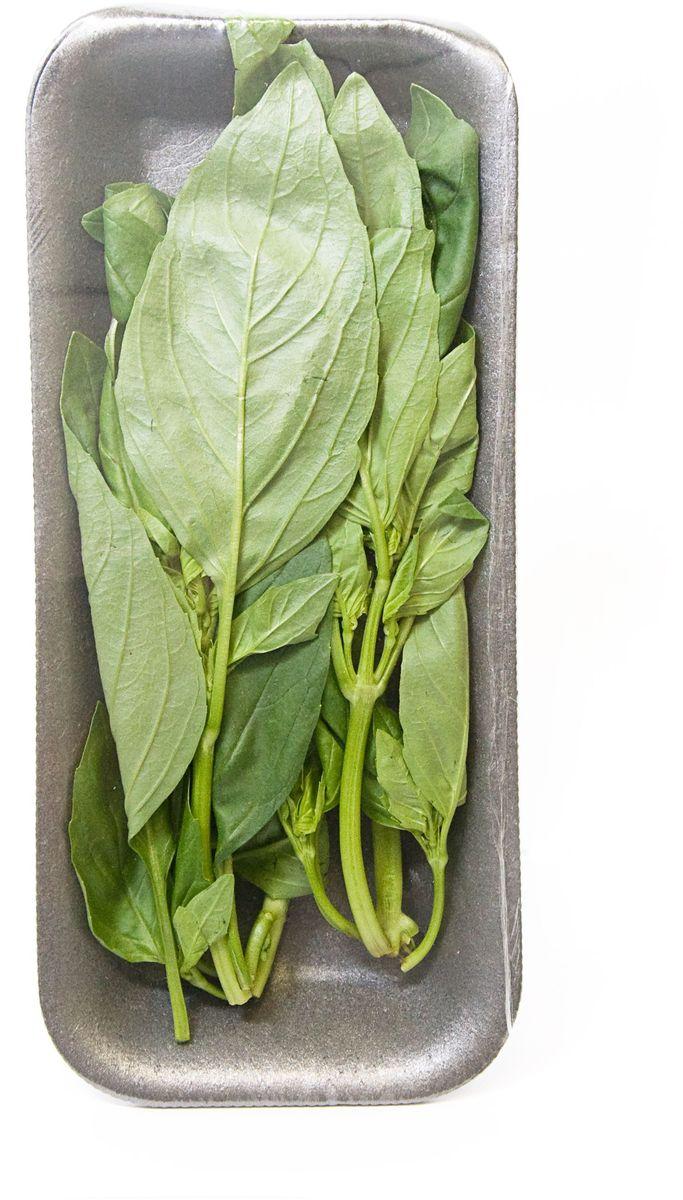 Базилик зеленый, 25 г22298Эфирное масло базилика представляет собой текучую прозрачную жидкость с выраженным ароматом. Запах этого растения повышает артериальное давление, улучшает кровообращение, снимает головную боль. Это масло считается самым эффективным при переедании, его можно применять при метеоризме, тошноте, спазмах. Зелень базилика имеет очень приятный пряный запах душистого перца со слегка холодящим солоноватым вкусом.В современной медицине базилик используют для приготовления ароматических ванн, полосканий и в качестве мягчительного средства. Содержащееся в базилике эфирное масло прекрасно смягчает и тонизирует кожу. Благодаря содержанию камфоры базилик успешно применяют как возбуждающее средство при угнетении центральной нервной системы, ослаблении функции дыхания и нарушении кровообращения, а также в качестве общетонизирующего средства. Уважаемые клиенты! Обратите, пожалуйста, внимание: изображение товара на сайте может отличаться от фактического вида товара. Фото представлено для визуального восприятия товара.