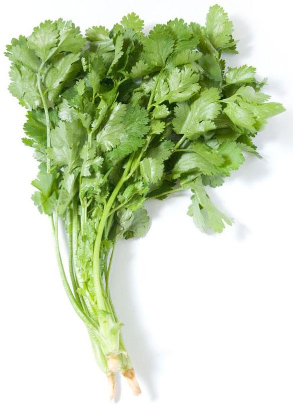 Кинза, 25 г по вкусу зелень петрушки сушеная 10 г