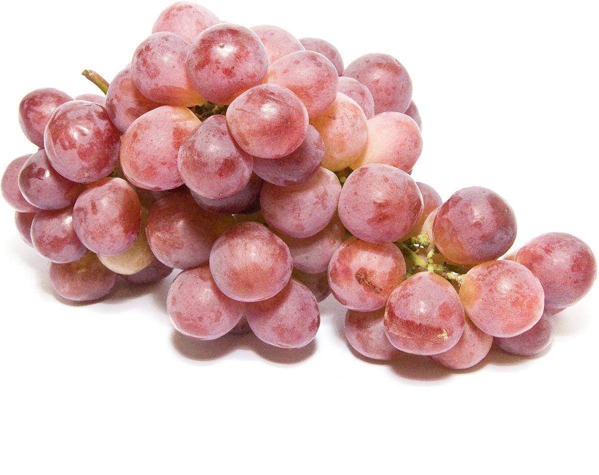Виноград Рэд Глоуб, 500 г469Виноград Рэд Глоуб отличается привлекательным видом и превосходным вкусом. Именно яркая, многообразная вкусовая палитра делает этот виноград настолько востребованным. Сочные ягоды придутся по душе взрослым и детям, станут изысканным десертом, и помогут разнообразить меню. Помимо достойных кулинарных возможностей виноград обладает пользой для здоровья, поскольку содержит целую россыпь витаминов, микроэлементов и органических кислот, оказывающих укрепляющее воздействие на весь организм в целом. Виноград подходит для употребления в самостоятельном виде и приготовления сока. Уважаемые клиенты! Обратите, пожалуйста, внимание: изображение товара на сайте может отличаться от фактического вида товара. Фото представлено для визуального восприятия товара.