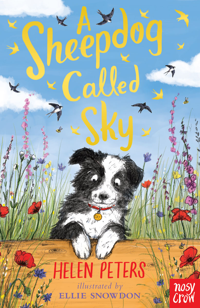 A Sheepdog Called Sky until you
