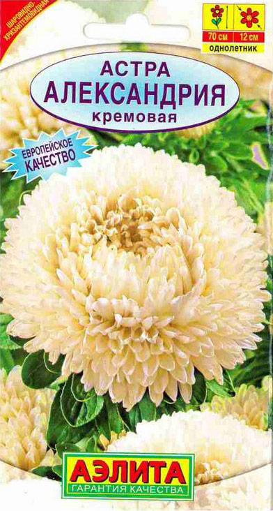 Семена Аэлита Астра. Александрия кремовая4601729033513Прекрасный сорт универсального назначения. Крупные густомахровые соцветия диаметром 12 см на супердлинных, мощных стеблях идеальны для срезки. Красивый прочный куст 70 см высотой хорошо вписывается в сборные цветники в качестве растения среднего плана. Сорт отлично сочетается практически со всеми однолетниками позднелетнего и осеннего цветения, подходящими по размеру. Регулярная срезка распустившихся соцветий стимулирует закладку новых бутонов.Посев. Выращивают рассадным способом. С развитием первой пары настоящих листочков сеянцы пикируют. На постоянное место рассаду высаживают в возрасте 30-35 дней. Возможен посев семян в открытый грунт весной или под зиму, в конце октября. Растениям необходимы регулярные поливы, прополки, рыхления и подкормки.Уважаемые клиенты! Обращаем ваше внимание на то, что упаковка может иметь несколько видов дизайна. Поставка осуществляется в зависимости от наличия на складе.