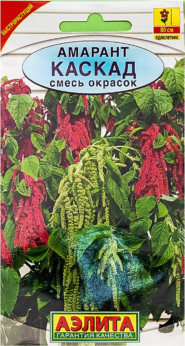 Семена Аэлита Амарант. Каскад смесь окрасок4601729039249Однолетник. Высота растения 80 см. Быстрорастущее однолетнее растение с эффектными соцветиями. Стеблимощные, прямостоячие, высотой до 80 см. Мелкие цветки собраны в поникающие метельчатые соцветия длиной 60- 80 см. Цветение обильное, с июля до заморозков. Растения тепло- и светолюбивые, засухоустойчивые, непереносят сырые и кислые почвы. Отлично смотрятся группами из нескольких растений или в виде бордюра вдользаборов, на заднем плане цветников. Хорошо подходят для срезки и составления зимних сухих букетов. Посев в открытый грунт в конце мая, на глубину 1-1,5 см. Семена прорастают при температуре почвы не ниже +14°С. Всходы появляются через 4-5 дней. Всходы прореживают. Для поддержания декоративности желательнырегулярные подкормки комплексным удобрением.Товар сертифицирован.Уважаемые клиенты! Обращаем ваше внимание на то, что упаковка может иметь несколько видов дизайна.Поставка осуществляется в зависимости от наличия на складе.