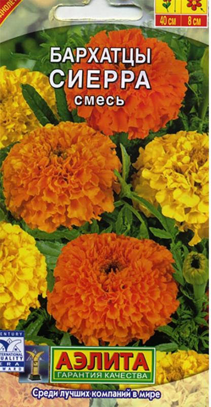 Семена Аэлита Бархатцы. Сиерра смесь4601729045424Однолетник. Высота 70 см. Диаметр 8 см.Высокорослые, обильноцветущие бархатцы с крупными густомахровыми соцветиями-корзинками диаметром 7-9 см.Кусты крепкие, хорошо разветвленные, высотой 60-70 см, с множеством прочных цветоносов. Цветение раннее ипродолжительное, с июня до заморозков. Растения неприхотливые, засухоустойчивые, тепло- и светолюбивые.Бархатцы Сиерра прекрасно держат форму в течение всего сезона, устойчивы к воздействию ветра и дождя.Используются для выращивания на клумбах, в цветниках и рабатках. Выращивают рассадным способом. Посев семян проводят в первой половине апреля. Всходы появляются через 4-8дней после посева, сеянцы пикируют в фазе одного-двух настоящих листьев. Рассаду высаживают в конце мая- начале июня. Возможен посев в открытый грунт в мае на глубину 1см. Растениям необходимы регулярные поливы,прополки, рыхления и подкормки. Товар сертифицирован.Уважаемые клиенты! Обращаем ваше внимание на то, что упаковка может иметь несколько видов дизайна.Поставка осуществляется в зависимости от наличия на складе.