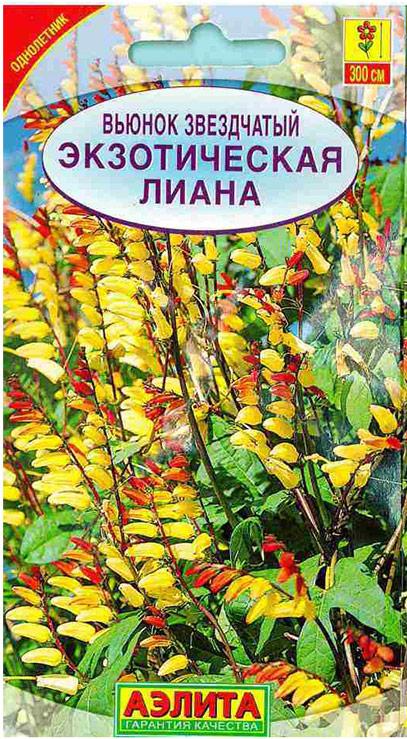 Семена Аэлита Вьюнок звездчатый. Экзотическая Лиана4601729068300Декоративное, вьющиеся растение, достигает длины 3 м, с легкостью сможет обвить любую опору. Цветки многочисленные, сначала красные, а позже желто-красные, собраны в пышные соцветия. Цветет с конца июля до заморозков. Семена на рассаду высевают в марте. Подросшие растения высаживают в открытый грунт в мае-июне на расстоянии 50-60 см. Выращивается в открытом грунте для декорирования беседок, балконов и изгородей. Для продолжительного и обильного цветения растениям необходим своевременный полив, регулярная прополка, рыхление и подкормка. Товар сертифицирован.Уважаемые клиенты! Обращаем ваше внимание на то, что упаковка может иметь несколько видов дизайна. Поставка осуществляется в зависимости от наличия на складе.