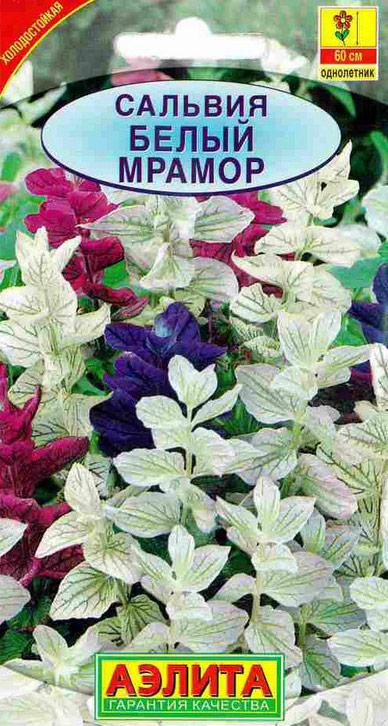 Семена Аэлита Сальвия. Белый мрамор4601729084768 Уважаемые клиенты! Обращаем ваше внимание на то, что упаковка может иметь несколько видов дизайна. Поставка осуществляется в зависимости от наличия на складе.