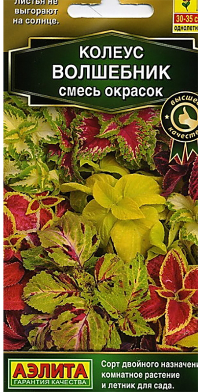Семена Аэлита Колеус блюме. Волшебник. Смесь окрасок4601729087172Популярное декоративно-лиственное растение, которое с равным успехом используется как комнатное и каксадовый летник. Выращивать его из семян - большое удовольствие, он отлично удается даже у новичковцветоводства. Невероятно яркие, попугайные расцветки, бархатная фактура и разнообразная форма листьеввоспринимаются с неизменным восхищением. Листья не выгорают на солнце, их насыщенный цвет сохраняется напротяжении всего сезона. Быстрорастущая крапивка хорошо смотрится в контейнерных композициях с другимилетниками, в группах, на клумбах, в бордюрах, массивами на рабатках. Для максимальной декоративности колеусунеобходим яркий свет, защита от ветров, легкая питательная почва. Чтобы растение не тратило сил на цветение,удаляйте цветочные стрелки сразу после их появления.Посев семян на рассаду в марте. Сеют поверхностно, без заделки, под стекло. Всходы появляются через 10-12дней. С появлением рисунка на листьях сеянцы пикируют в отдельные горшки. При достижении растениями высоты7-8 см проводят формирующую прищипку. Высадка рассады в грунт - в начале июня.Уважаемые клиенты! Обращаем ваше внимание на то, что упаковка может иметь несколько видов дизайна.Поставка осуществляется в зависимости от наличия на складе.