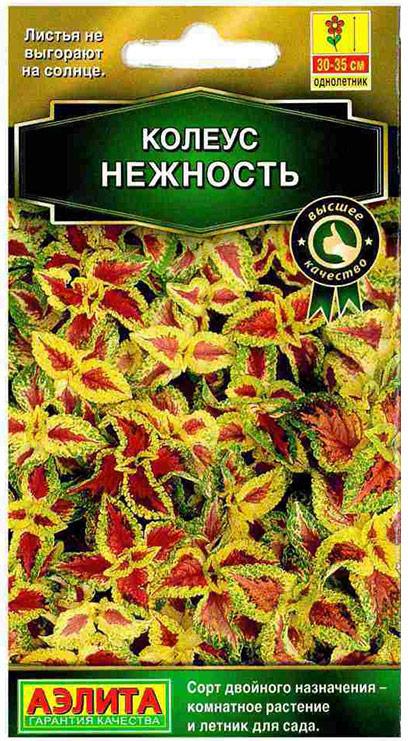 Семена Аэлита Колеус блюме. Нежность4601729087196Изящное и утонченное декоративно-лиственное растение, которое вызывает неизменное восхищение. Растение высотой 30 - 35 см образует невероятно яркой расцветки, бархатной фактуры и разнообразной формы листья красно-коричневого цвета с широкой желтой в зеленую крапинку каймой. Листва колеуса не выгорает на солнце, сохраняя насыщенный цвет на протяжении всего сезона. Сорт имеет двойное назначение - используется как комнатное растение и как садовый однолетник. Быстрорастущая крапивка идеально подходит для клумб, бордюрных посадок, массивов на рабатках, создания контейнерных композиций с другими летниками, групповых посадок.Выращивать колеус из семян - большое удовольствие, он отлично удается даже у новичков цветоводства.Месторасположение: для максимальной декоративности колеусу необходим яркий свет, защита от ветров, легкая питательная почва.Посев: на рассаду в марте. Сеют поверхностно, без заделки, под стекло. Всходы появляются через 10 - 12 дней. С появлением рисунка на листьях сеянцы пикируют в отдельные горшки. При достижении растениями высоты 7 - 8 см проводят формирующую прищипку.Посадка: рассады в грунт - в начале июня по схеме 25 х 25 см.Уход: чтобы растение не тратило сил на цветение, удаляйте цветочные стрелки сразу после их появления. Для хорошего роста растениям необходим своевременный полив, регулярная прополка, рыхление и подкормка минеральными удобрениями.Уважаемые клиенты! Обращаем ваше внимание на то, что упаковка может иметь несколько видов дизайна. Поставка осуществляется в зависимости от наличия на складе.