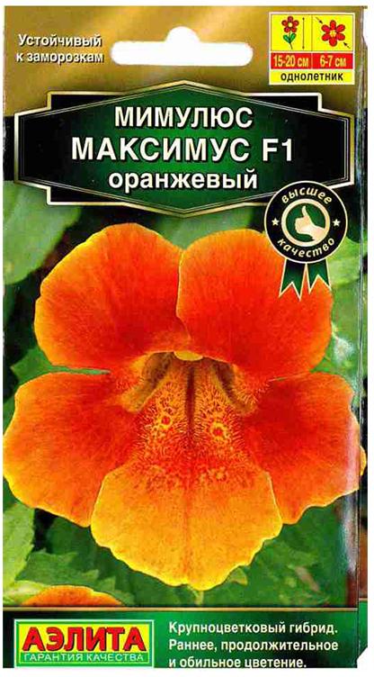 Семена Аэлита Мимулюс оранжевый. Максимус F14601729087455Это теплолюбивое растение с побегами высотой до 1 м. Оранжевые или лососево-розовые цветки с венчиками диаметром до 4 см выделяются на фоне его темно-зеленых блестящих листьев.Побеги этого вида нуждаются в опоре, иначе они пригибаются к земле и стелятся по ней. Мимулюс оранжевый очень привлекательное растение, часто используемое для выращивания в висячих корзинах и контейнерах. Зиму он может провести в прохладном помещении.Мимулюсы неприхотливы, любят рыхлые, питательные, влажные почвы, содержащие торф. Они хорошо растут на солнце и в тени, на сырых и даже болотистых участках. Однако при возможности следует учесть, что им все же противопоказаны прямые солнечные лучи. Поэтому лучше всего размещать их на участке в легкой полутени, например во внутреннем дворике или на балконе.Одно из очень важных достоинств мимулюса - его относительно высокая холодостойкость, осенью во время цветения переносит заморозки до -30°С.Мимулюсы можно высаживать на клумбах, в рабатках, альпинариях. Их широко используют в качестве почвопокровного растения. Благодаря очень ярким цветкам мимулюс часто высаживают отдельно, без сопутствующих растений.Сеять семена мимулюса на рассаду нужно в конце марта или в начале апреля. Из-за их мелкого размера распределить их по поверхности субстрата равномерно у вас не получится, поэтому выращивание губастика рассадой без пикировки невозможно. В качестве субстрата для рассады можно использовать универсальный грунт с кокосовым волокном и перлитом, добавив в него немного чистого песка: главное, чтобы субстрат был легким и рыхлым.В почву семена не заделывают: их увлажняют из пульверизатора, накрывают посевы прозрачной пленкой или стеклом и содержат в светлом месте при температуре 15-18 °C. При таких условиях мимулюс из семян начнет прорастать уже через 2-3 дня.Для рассады выкапывают лунки такой глубины, чтобы в них поместилась корневая система сеянцев с земляным комом. Расстояние между лунками - 20-30 см.П