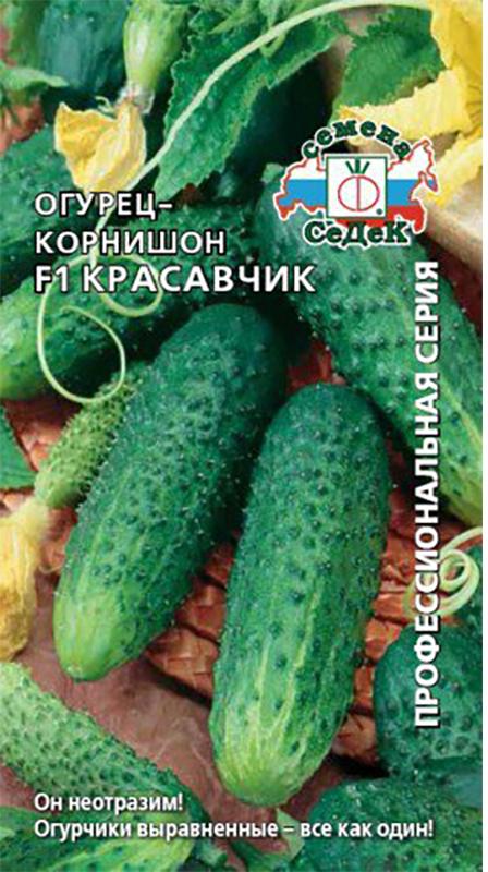 Семена Седек Огурец. Красавчик4607015182828 Уважаемые клиенты! Обращаем ваше внимание на то, что упаковка может иметь несколько видов дизайна. Поставка осуществляется в зависимости от наличия на складе.