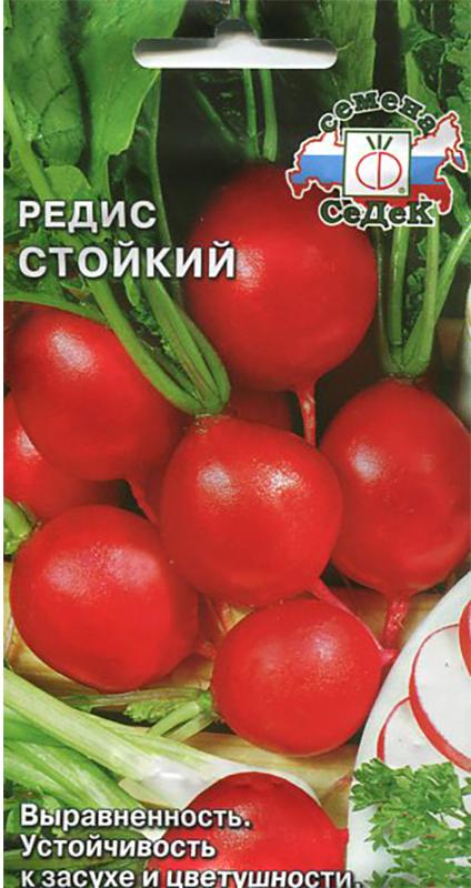 Семена Седек Редис. Стойкий семена седек тыква бутылочная декоративная