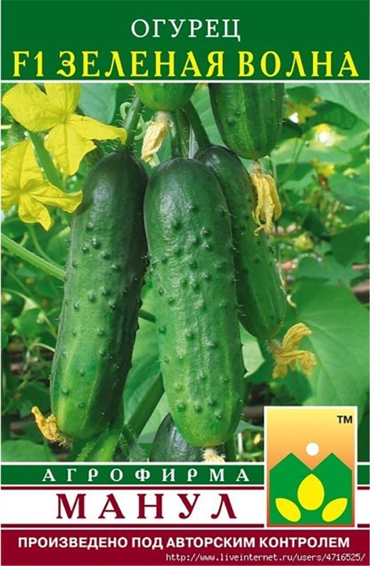 Семена Манул Огурец. Зеленая волна F14607082862890 Уважаемые клиенты! Обращаем ваше внимание на то, что упаковка может иметь несколько видов дизайна. Поставка осуществляется в зависимости от наличия на складе.