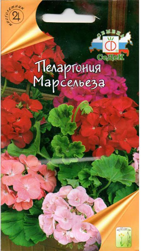 Семена Седек Пеларгония. Марсельза4607149408023Многолетник, выращиваемый как летник. Этой смеси присуща интересная окраска листьев. На фоне светло или темно- зеленых листовых пластинок ярковыражены зональные кольца более темного цвета. При этом у кустика очень компактная форма. Низкорослый иаккуратный, он усыпан зонтиками очень крупных цветков разнообразной окраски, от белой до пурпурной, сполутонами и оттенками. Отлично подходит для украшения окон и балконов. Очень красиво смотрится в емкостях. Прост в выращивании,неприхотлив. При желании, выкопанный в саду кустик можно пересадить в плошку и перенести на зиму в теплоепомещение, где он будет цвести всю зиму. Уважаемые клиенты! Обращаем ваше внимание на то, что упаковка может иметь несколько видов дизайна.Поставка осуществляется в зависимости от наличия на складе.
