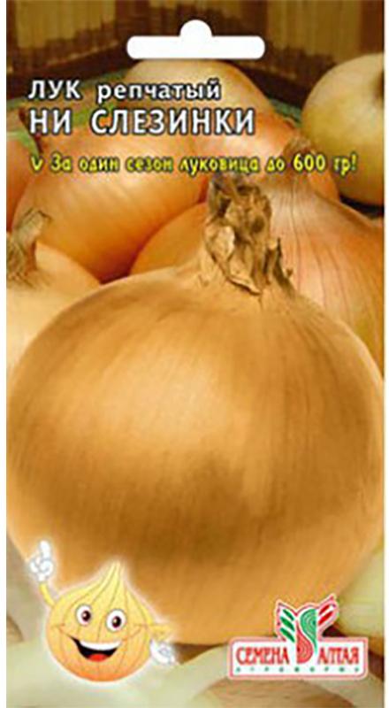 Семена Алтая Лук репчатый. Ни слезинки4620009638378Ни капли мучения! Сорт сладкого лука избавит вас от слез! Среднепоздний сорт (130 дней), предназначен для получения репки в однолетней культуре, двухзачатковый, луковицы крупные, массой от 150 до 600 г. Окраска сухих чешуй соломенно-желтая, сочныхбелая. Сорт салатного назначения. Не предъявляет особых требований к типу почв — главное, чтобы были обеспечены хороший дренаж и аэрация почвы. Предпочитает плодородные, некислые почвы. Выращивают посевом семян в открытый грунт. Посев семян производят как только готова почва (обычно в апреле). Семена высевают на глубину 1,0-1,5 см. Чтобы получить крупный репчатый лук, перо на зелень не срывают. Сбор урожая товарного лука производят, когда листья начнут желтеть и полегать (обычно в августе). Если опоздать с уборкой, рост лука возобновляется, луковицы становятся непригодными для длительного хранения. Луковицы выкапывают и хорошо просушивают.Уважаемые клиенты! Обращаем ваше внимание на то, что упаковка может иметь несколько видов дизайна. Поставка осуществляется в зависимости от наличия на складе.