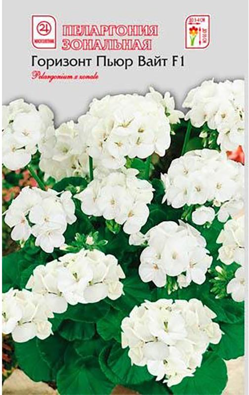 Семена Алтая Пеларгония зональная. Горизонт Пьюр Вайт F14620009639825Многолетнее растение - можно выращивать как комнатное, или садовое однолетнее. Великолепный гибрид! Формирует объемный и компактный кустик высотой 30-35 см. Простые крупные цветки собраны в огромные шапки белоснежных шаровидных соцветий, до 12 см в диаметре. Серия специально предназначена для выращивания в горшках. Отличается повышенной однородностью и необыкновенной обильностью цветения. Пеларгония Горизонт широко используется в озеленении лоджий, веранд, балконов, а также для создания ярких композиций в саду.Растения светолюбивы, но могут расти и в полутени, относительно холодостойки, засухоустойчивы и нуждаются в легких питательных почвах. Семена на рассаду высевают с января по сентябрь в рыхлую легкую почву. Посевы накрывают пленкой или стеклом и ставят в светлое и теплое место. При температуре 20-21°С всходы появляются на 5-7 день. При недостатке света сеянцы вытягиваются и погибают. Пикируют при появлении 2-3 настоящих листьев. В сад можно высаживать с конца мая, когда минует угроза заморозков.Уважаемые клиенты! Обращаем ваше внимание на то, что упаковка может иметь несколько видов дизайна. Поставка осуществляется в зависимости от наличия на складе.