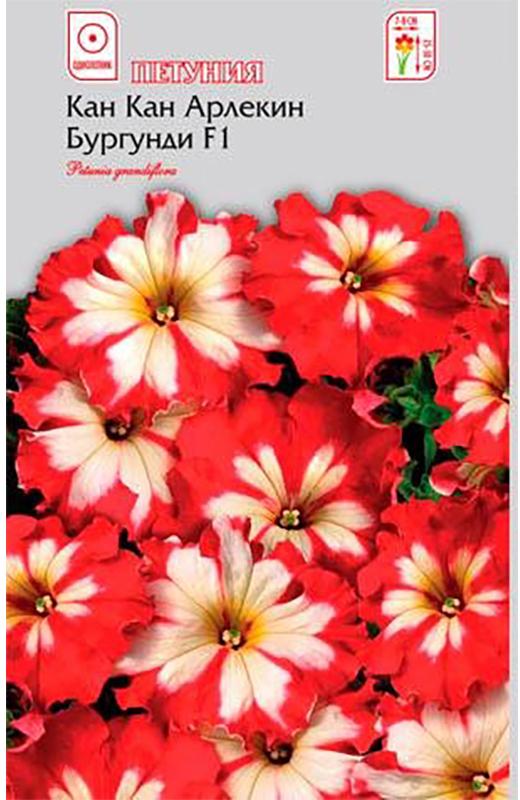 Семена Алтая Петуния. Кан Кан Арлекин Бургунди F14620009639924Новая превосходная крупноцветковая петуния с бархатными кружевными цветами. Компактные растения высотой до 25 см, с яркими, похожими на звезды, цветками красно-белой окраски, диаметром 8-10 см. Устойчива к неблагоприятным погодным условиям. Незаменима для оформления клумб, рабаток, а так же балконных ящиков, подвесных корзин и кашпо.Семена на рассаду сеют в марте, не заделывая землей, а просто накрывая ящики стеклом. Пока всходы мелкие, их лучше не поливать, а опрыскивать. На открытом воздухе продолжают выращивать с конца мая. Возможно сохранение растений в зимний период в комнатных условиях.Уважаемые клиенты! Обращаем ваше внимание на то, что упаковка может иметь несколько видов дизайна. Поставка осуществляется в зависимости от наличия на складе.