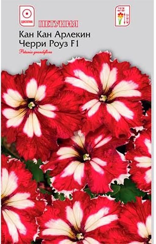 Семена Алтая Петуния. Кан Кан Арлекин Черри Роуз F14620009639931Новая превосходная крупноцветковая петуния с бархатными кружевными цветами. Компактные растения высотой до 25 см, с яркими, похожими на звезды, цветками красно-белой окраски, диаметром 8-10 см. Устойчива к неблагоприятным погодным условиям. Незаменима для оформления клумб, рабаток, а так же балконных ящиков, подвесных корзин и кашпо. Семена на рассаду сеют в марте, не заделывая землей, а просто накрывая ящики стеклом. Пока всходы мелкие, их лучше не поливать, а опрыскивать. На открытом воздухе продолжают выращивать с конца мая. Возможно сохранение растений в зимний период в комнатных условиях.Уважаемые клиенты! Обращаем ваше внимание на то, что упаковка может иметь несколько видов дизайна. Поставка осуществляется в зависимости от наличия на складе.
