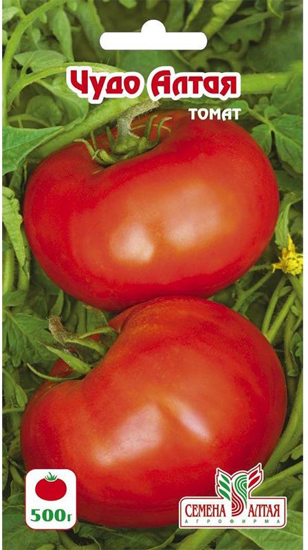 Семена Алтая Томат. Чудо Алтая4630043103589Селекция Агрофирмы Семена Алтая. Среднеспелый сорт с хорошей завязываемостью плодов. Растение детерминантное. Плоды крупные, мясистые, массой 180 г (на первой кисти до 500 г), красные, очень вкусные, сочные, на кисти 3-5 плодов. Используется для употребления в свежем виде. Особенно хорош для салатов, соков и кетчупов. В марте семена высевают на слегка утрамбованный грунт, мульчируют торфом или почвенным слоем 1,0 см, поливают теплой водой через ситечко, накрывают пленкой и ставят в теплое (около 25°С) место. После появления всходов пленку снимают, рассаду размещают в светлом месте. В течение 5-7 суток температуру поддерживают на уровне 15-16°С, затем повышают до 20-22°С. В фазе 1-2 настоящих листьев рассаду пикируют. 60-65-дневную рассаду в фазе 6-7 настоящих листьев и хотя бы одной цветочной кисти высаживают в защищенный или открытый грунт.Уважаемые клиенты! Обращаем ваше внимание на то, что упаковка может иметь несколько видов дизайна. Поставка осуществляется в зависимости от наличия на складе.