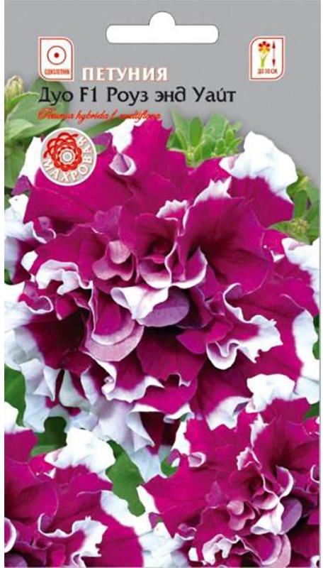 Семена Алтая Петуния. Дуо F1 Роуз энд Уайт4630043111362Эффектная махровая петуния с нарядной окраской цветков. Кустики ветвящиеся компактные, высотой около 30 см, усыпаны массой махровых розово-белых цветков с гофрированными лепестками. Растение устойчиво к похолоданиям и непогоде. Цветение пышное и длительное. Чудесно смотрится в балконных ящиках, цветниках, в групповых посадках на газоне.Семена на рассаду высевают в конце февраля - марте не заделывая землей, а просто накрывая ящики стеклом. Пока всходы мелкие их лучше не поливать, а опрыскивать. Пикировка в фазе 1-2 настоящих листочков. Высадка в грунт закаленной рассады в конце мая - начале июня, когда минует угроза заморозков. Спокойно переносят пересадку во взрослом состоянии. Возможно сохранение растений зимой в освещенном помещении при температуре около 12°С с предварительной обрезкой побегов.Уважаемые клиенты! Обращаем ваше внимание на то, что упаковка может иметь несколько видов дизайна. Поставка осуществляется в зависимости от наличия на складе.