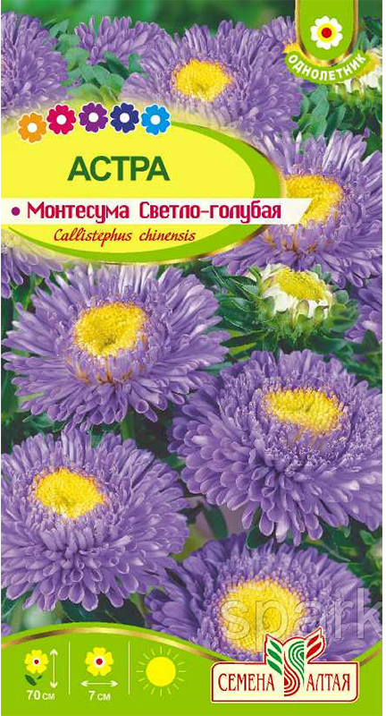 Семена Алтая Астра. Монтесума Светло-голубая4630043111522