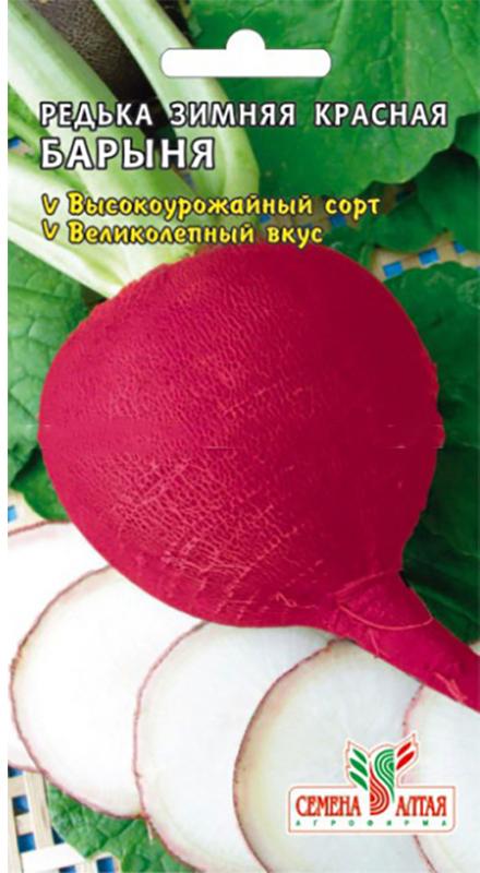 Семена Алтая Редька. Барыня Зимняя Красная4630043112062 Уважаемые клиенты! Обращаем ваше внимание на то, что упаковка может иметь несколько видов дизайна. Поставка осуществляется в зависимости от наличия на складе.