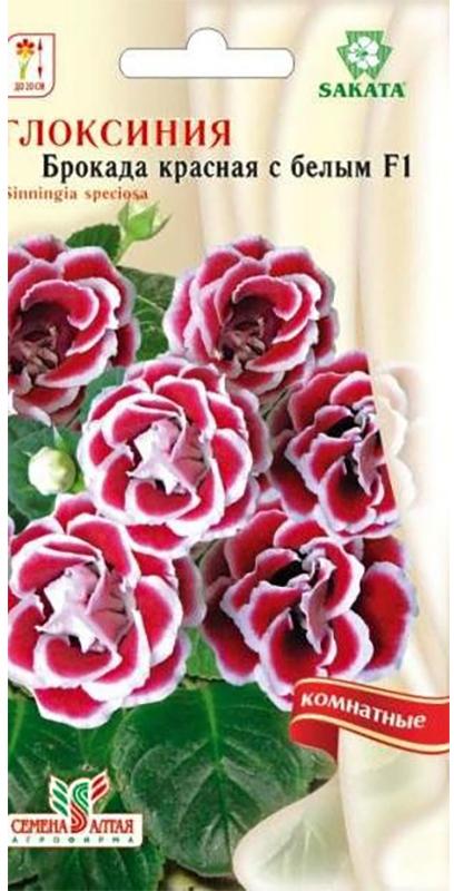 Семена Алтая Глоксиния. Брокада Голубая с белым краем4630043112383 Уважаемые клиенты! Обращаем ваше внимание на то, что упаковка может иметь несколько видов дизайна. Поставка осуществляется в зависимости от наличия на складе.