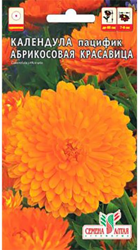 Семена Алтая Календула. Абрикосовая красавица4630043113472Декоративный однолетник с крупными, очаровательными соцветиями приятной лососево-оранжевой окраски, относящийся к группе Пацифик. Растение кустовой формы, ветвистое, высотой 60-65 см. Обильное цветение с июля по сентябрь. Послужит замечательным украшением для клумб, бордюров, отлично смотрится в срезке. Растение светолюбивое, холодостойкое и сравнительно неприхотливое, лучше растет на дренированных удобренных почвах при достаточном увлажнении. Размножают посевом семян в открытый грунт в мае или под зиму, всходы прореживают на расстоянии 20-30 см. Зацветает через 45-50 дней после появления всходов.Уважаемые клиенты! Обращаем ваше внимание на то, что упаковка может иметь несколько видов дизайна. Поставка осуществляется в зависимости от наличия на складе.