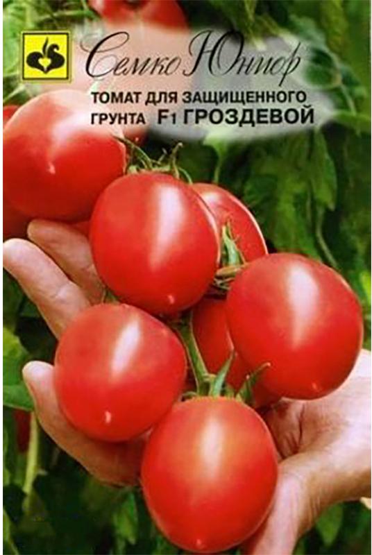Семена Семко Томат Гроздевой F14640001822827Уважаемые клиенты! Обращаем ваше внимание на то, что упаковка может иметь несколько видов дизайна. Поставка осуществляется в зависимости от наличия на складе.