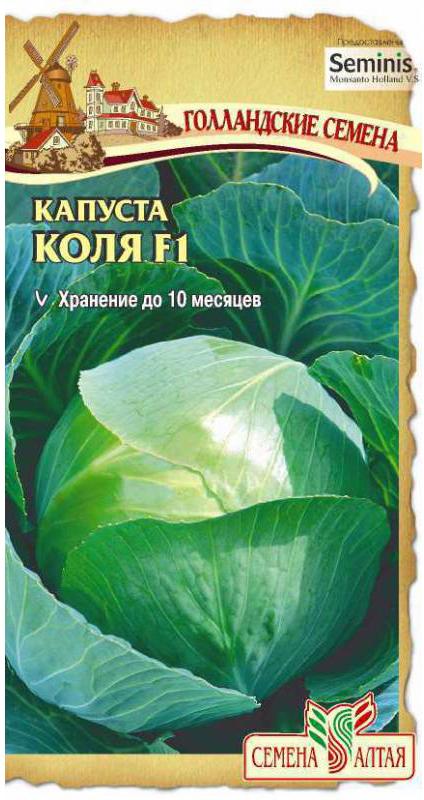 Семена Алтая Капуста белокочанная. Коля F14680206006547Среднепоздний высокопродуктивный гибрид. Лист среднего размера, серо-зеленый с сильным восковым налетом, слабоволнистый по краю. Кочаны округлые, на разрезе белые, массой 2,0-2,5 (до 5,0) кг. Сорт отлично подходит как для употребления в свежем виде, так и для закваски. Рекомендуется для длительного хранения (до 10 месяцев). Дает хороший урожай на плодородных, легкосуглинистых и суглинистых почвах. На кислых почвах растет плохо. При недостатке света образуются мелкие листья и рыхлые кочаны. Лучшие предшественники — бобовые, тыквенные, пасленовые растения (перец, томат, картофель), лук. Выращивают обычно через рассаду. В период выращивания рассаду следует поливать умеренно. За несколько дней до высадки рассаду закаливают. Рассаду высаживают в возрасте 50-55 дней во влажную и удобренную почву.Уважаемые клиенты! Обращаем ваше внимание на то, что упаковка может иметь несколько видов дизайна. Поставка осуществляется в зависимости от наличия на складе.