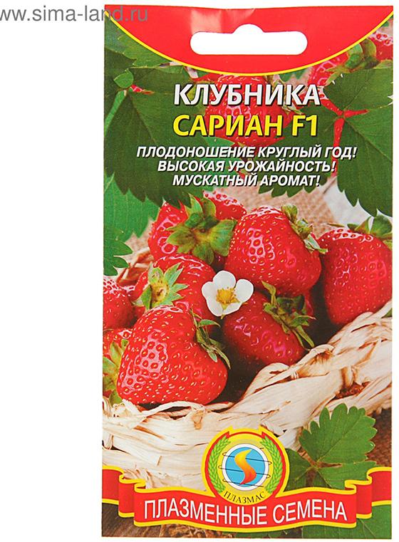 Семена Плазмас Клубника. Сариан4680224002415